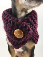 Plum Swagsnood - Close Up Neck View of Cute Chihuahua Dog Wearing Plum Color Dog Snood with Accent Button