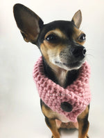 Rosewater Swagsnood - Close Up View of Cute Chihuahua Dog Wearing Dusty Rose Pink Color Dog Snood with Accent Button