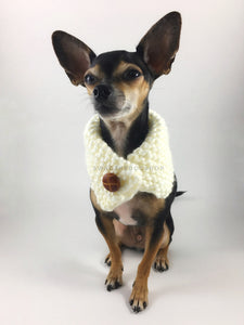 Winter Cream Swagsnood - Full Front View of Cute Chihuahua Dog Wearing Winter Cream Color Dog Snood with Accent Button