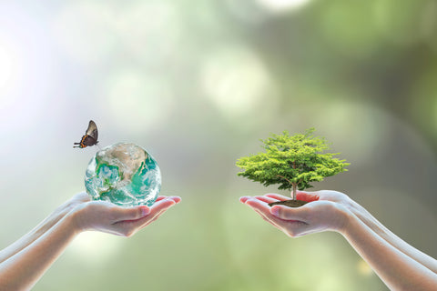 Sustainability hands holding tree and planet Earth