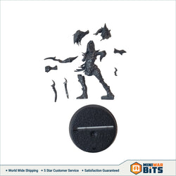 Naggaroth Nightmares Witch Elf Single Figure Bits