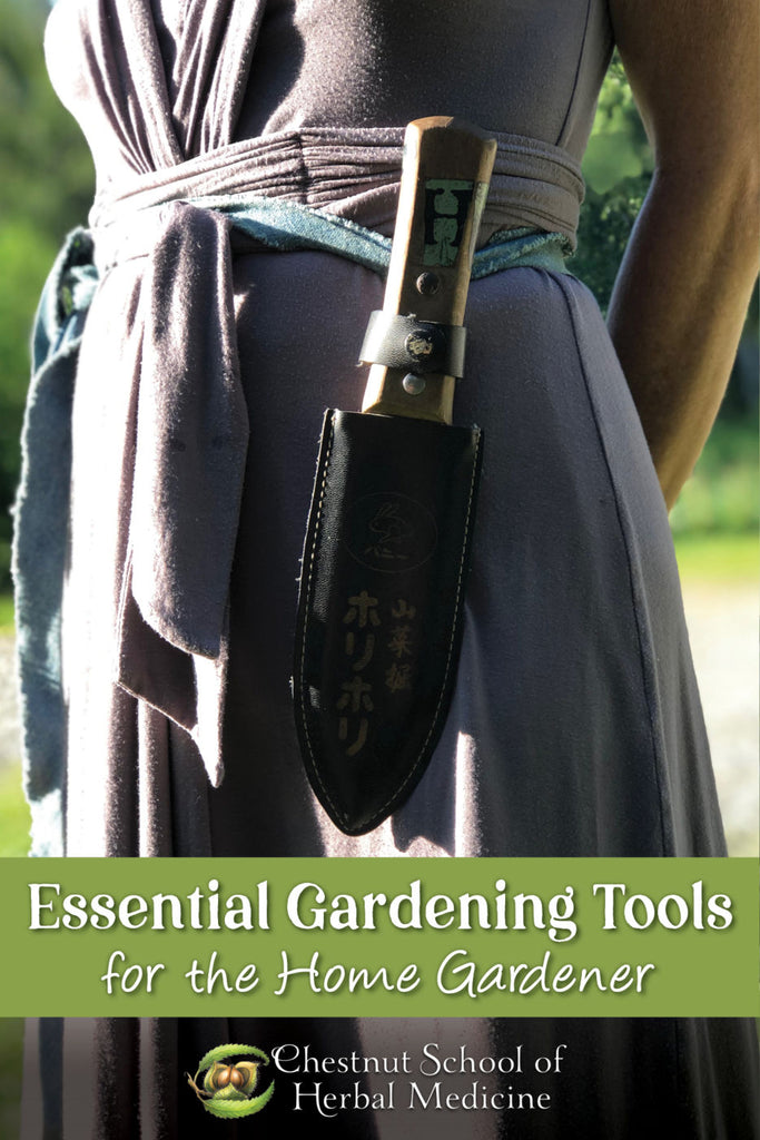 Essential Gardening Tools for the Home Gardener