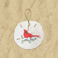 Sand Dollar Ornaments - Small