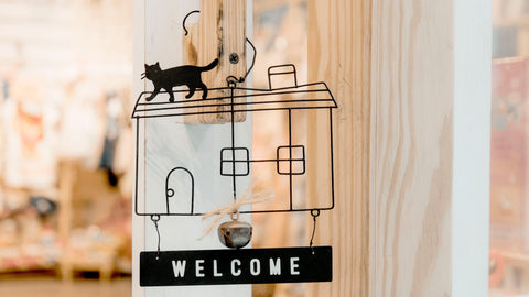 Bringing a new cat home? Here's what you'll need to prepare