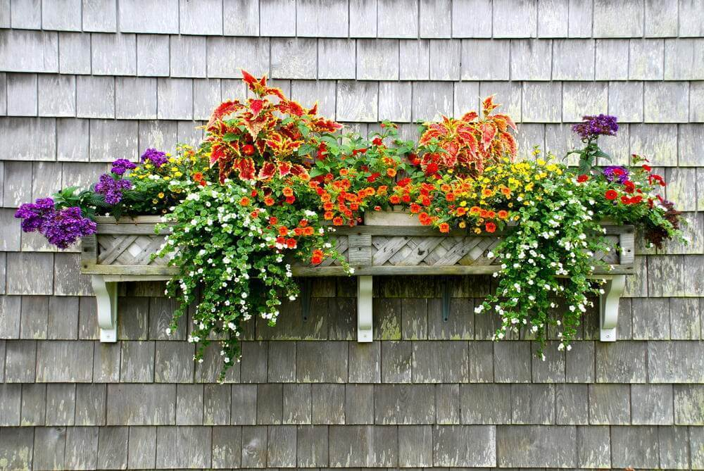 Small Spaces Hanging Flower Boxes
