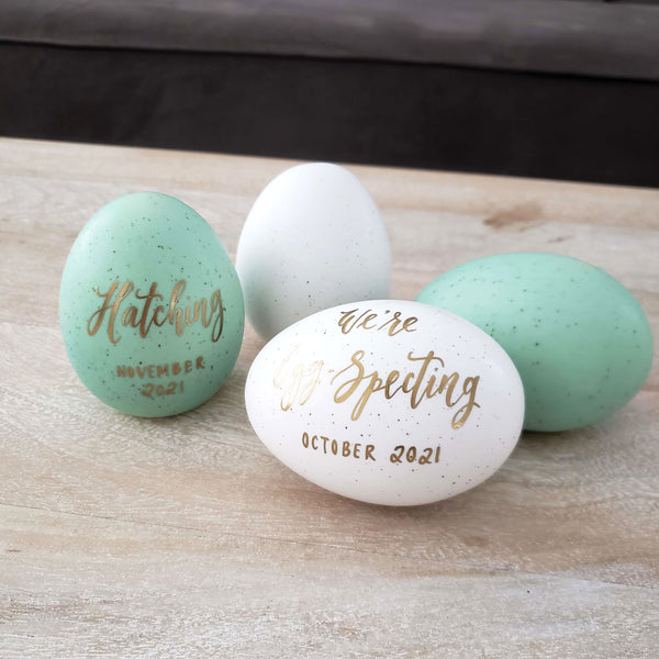 We're Eggspecting Pregnancy Announcement