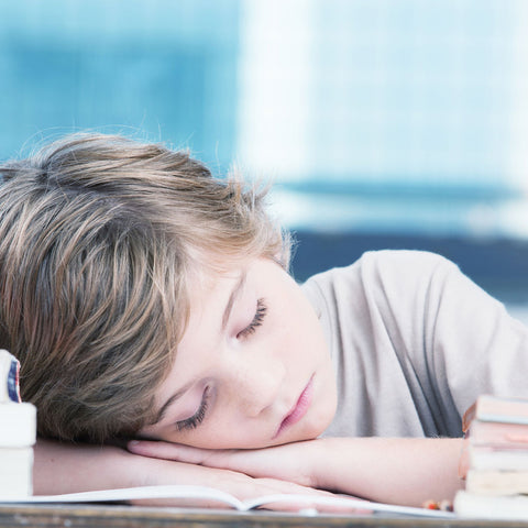 young boy sleeping on his desk at school