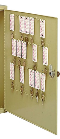 MMF Industries™ STEELMASTER® Extra Panel for Small Motor Vehicle Key Cabinet