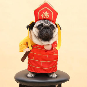 Unique Party Costumes - MĀO MĀO Shop