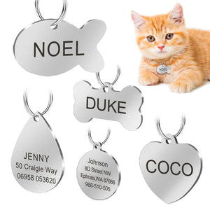 Mr Whiskers ID (personalized and engraved stainless steel tag) - MĀO MĀO Shop