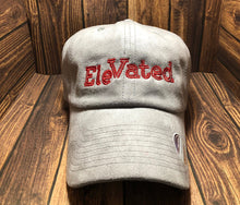 Load image into Gallery viewer, Grey EleVATED Suede Hat
