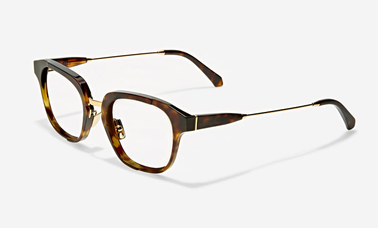 ray medium combination wayfarer frames