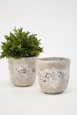 Cement Pot Large