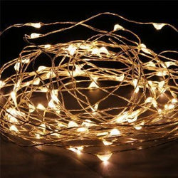 5m LED Silver Wire Seed Lights Warm White