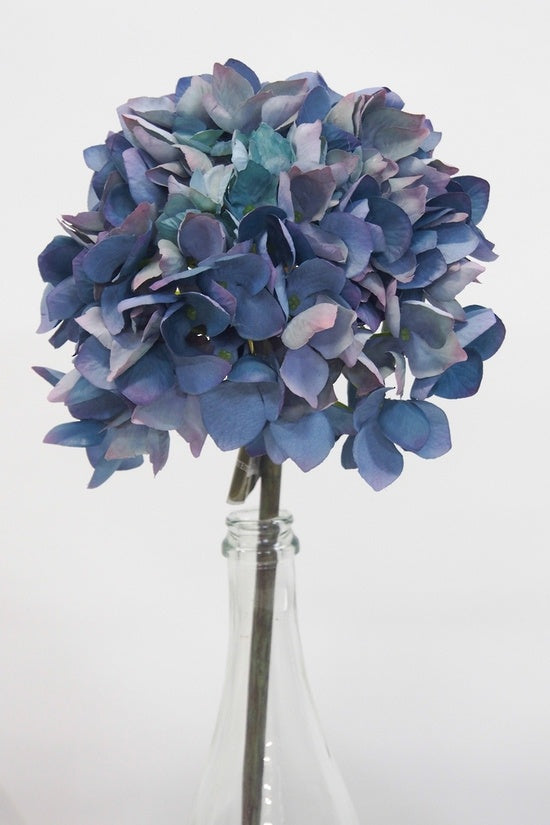 Cupped Hydrangea Blue/Pink