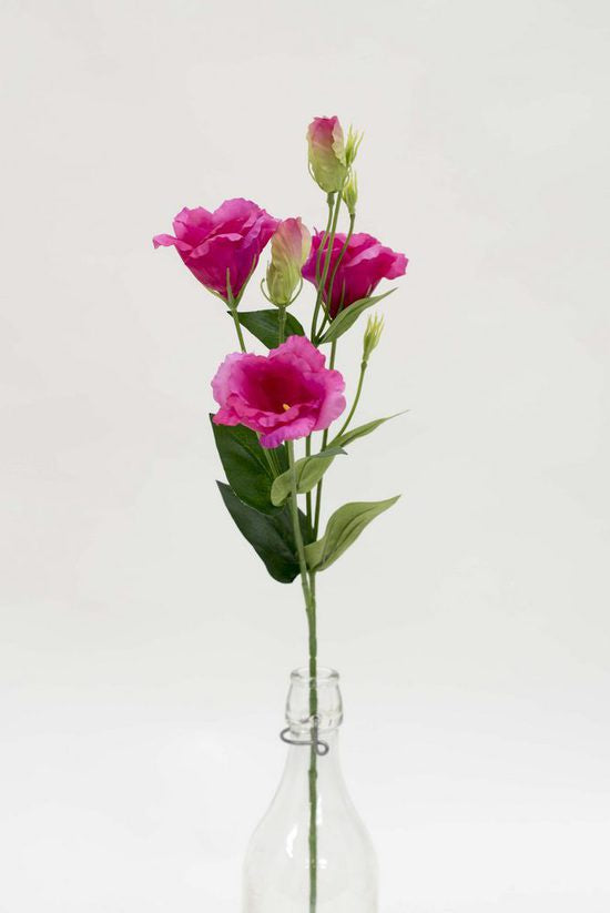Lisianthus Spray Fuschia