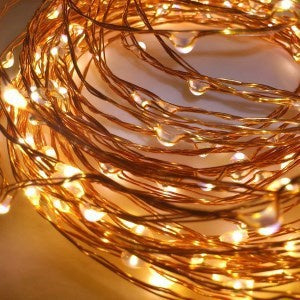10m LED Copper Wire Seed Lights - Plug In