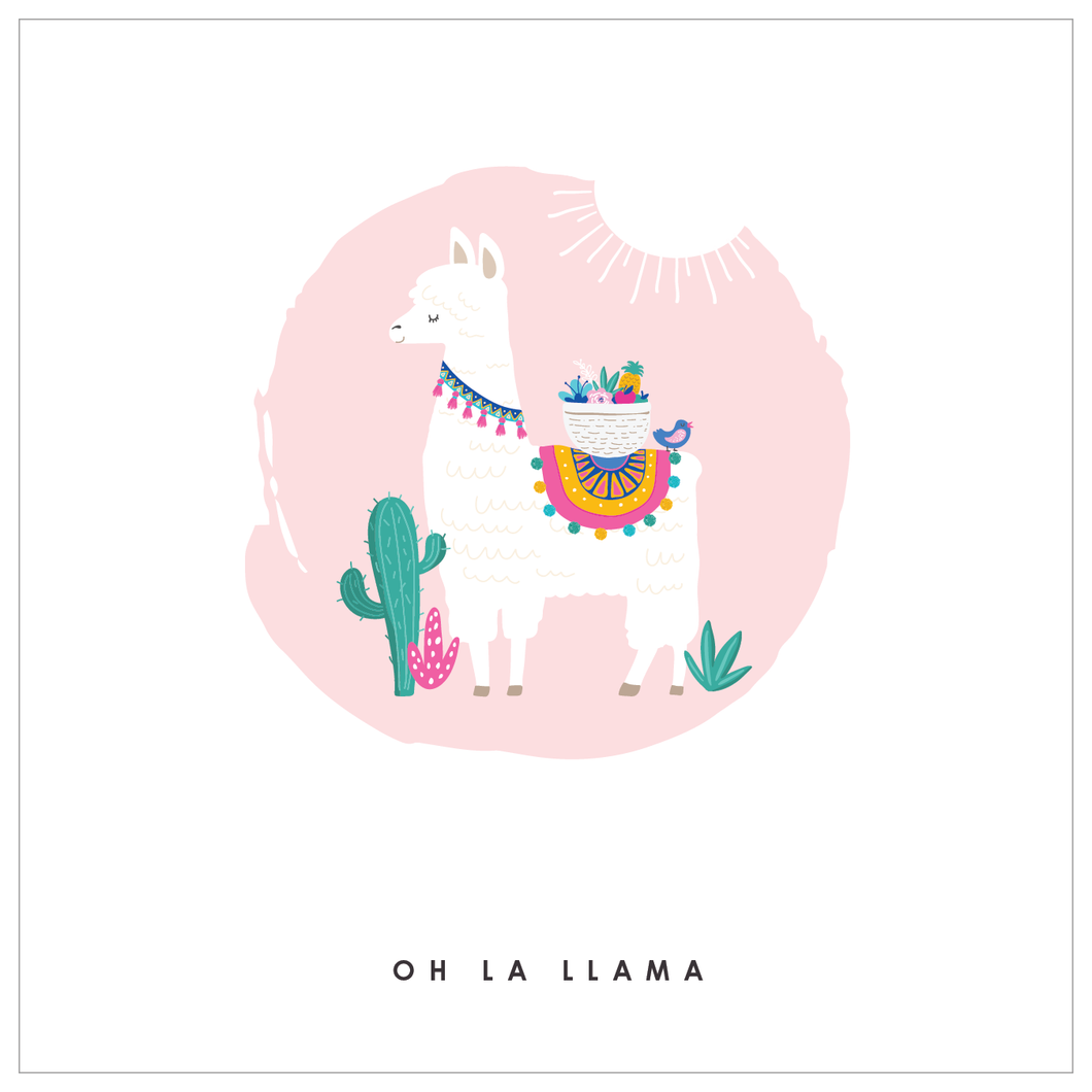 Ooh La Llama - Super Party Box