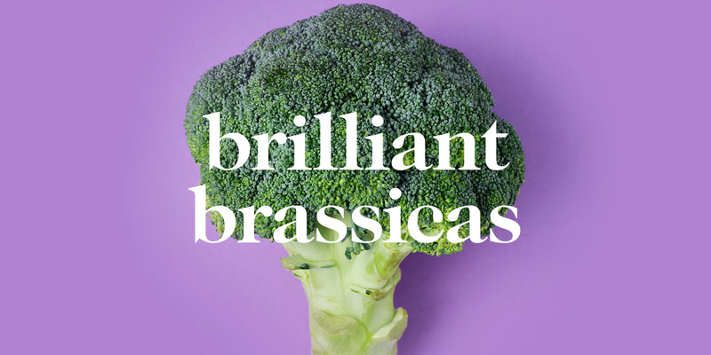 What Do You Know About Brilliant Brassicas?
