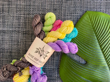 Load image into Gallery viewer, 'Funfetti' Mini skein set - 6x20g DK sock yarn