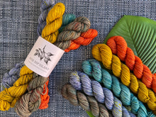 Load image into Gallery viewer, 'Autumnal' Mini skein set - 5x20g sock yarn