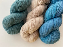 Load image into Gallery viewer, Sustainable Merino fingering- 'Marlin' colourway