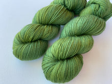 Load image into Gallery viewer, Dreamy merino silk - 'Tallest tree' colourway