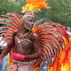 Man in colourful feathered carnival costume