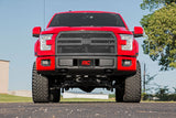 Ford Mesh Grille (15-17 F-150)