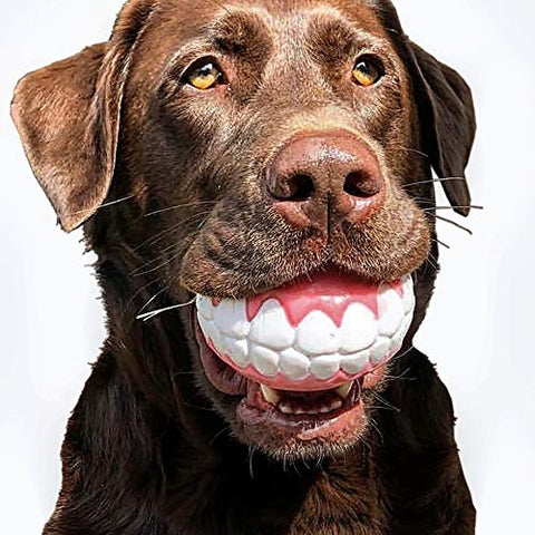 CHEECH! Share a Smile with The Incredible Fetch Ball for Medium to Large Dogs-Durable Rubber Dog Toy, Patented Design Ensures a Smile Every Time!