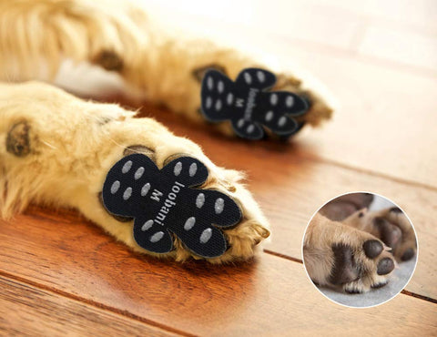LOOBANI PadGripsحDog Paw Protector Traction Pads to Keeps Dogs from Slipping On Hard FloorsحWalk Assistant for Your Senior Dogح12 Sets for 4 Paws