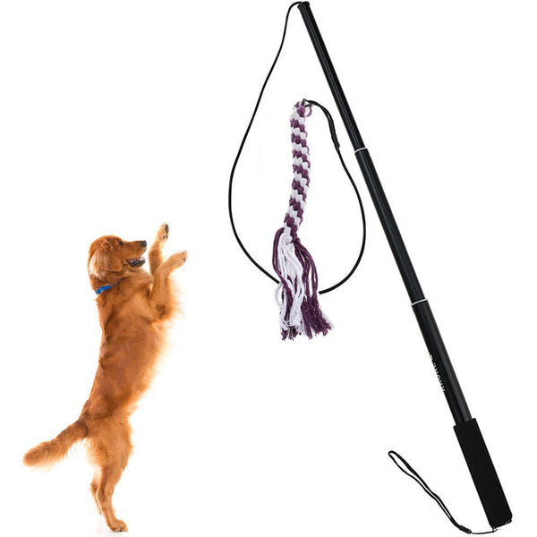 Sanzang Dog Toy Dog Outdoor Play Fun Interactive Chasing, Teaser and Exerciser, Extendable Length Interactive Wand