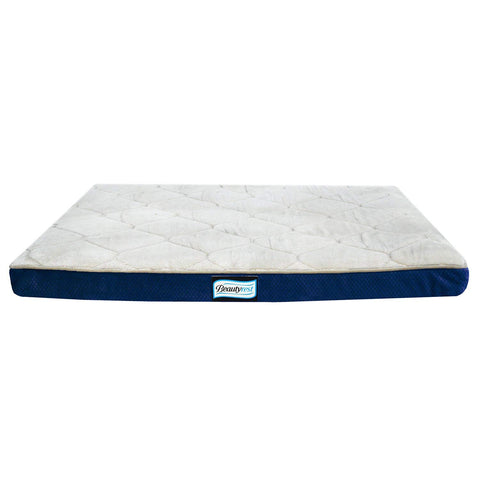 R2P Group Simmons Beautyrest Thera Bed Orthopedic Memory Foam Dog Bed and Kennel/Crate Mat