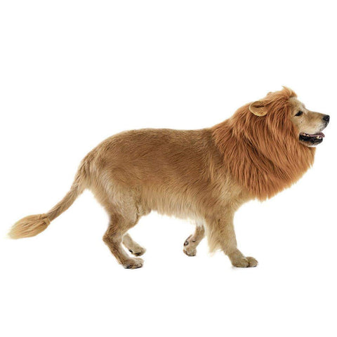 LCFUN Lion Mane Costume for Cat & Dog - Pet Wig Clothes for Halloween Party