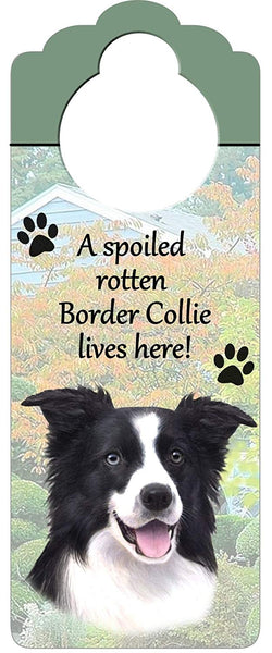 "Border Collie Wood Sign ""A Spoiled Rotten Border Collie Lives Here""with Artistic Photograph Measuring 10 by 4 Inches Can Be Hung On Doorknobs Or Anywh"
