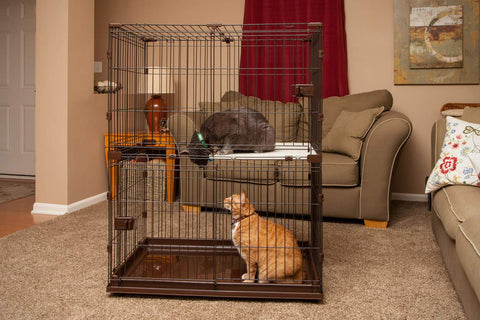 IRIS 2-Tier Small Animal Wire Cage