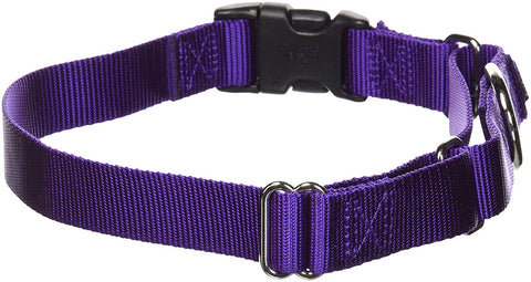 PetSafe Martingale Dog Collar Quick Snap Buckle
