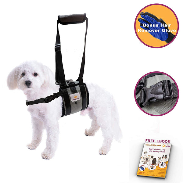 Veterinarian Approved Dog Support Harness + Hair Remover Glove - Dogs Sling Lift for Paralyzed Legs - Adjustable Straps - Mobility Rehabilitation for