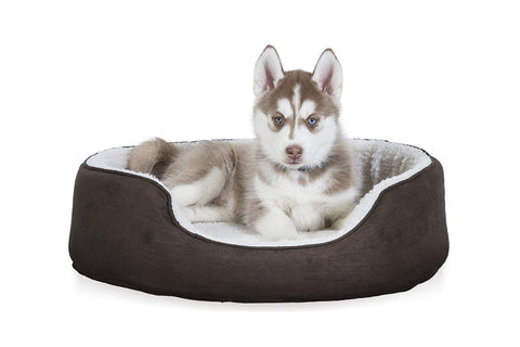 Furhaven Pet Dog Bed | Orthopedic Oval Lounger Pet Bed for Dogs & Cats Sizes