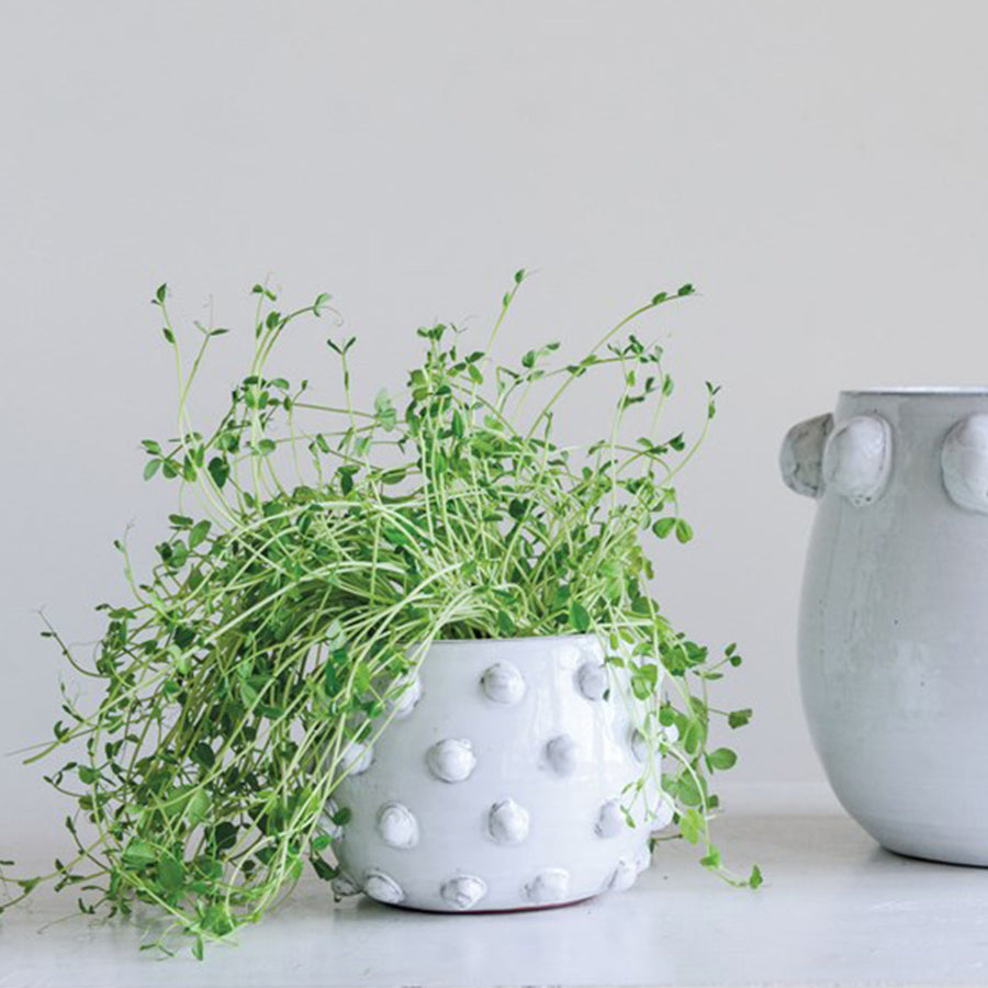 Terra-cotta Planter, White w/ Raised Dots
