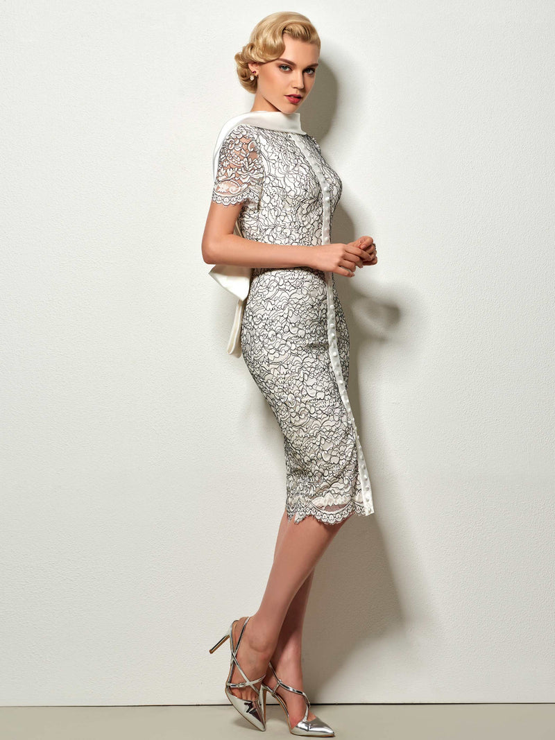 Lace High Neck Sleeveless Knee-Length Celebrity Dress