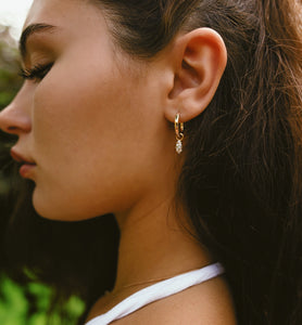 Drop Hoops - 14k yellow gold filled