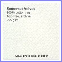 Load image into Gallery viewer, Somerset Velvet