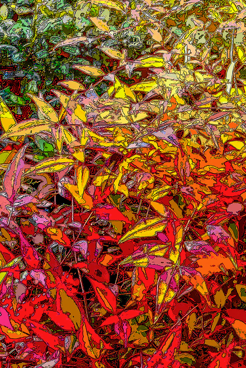 God's Profligacy, Autumn #3