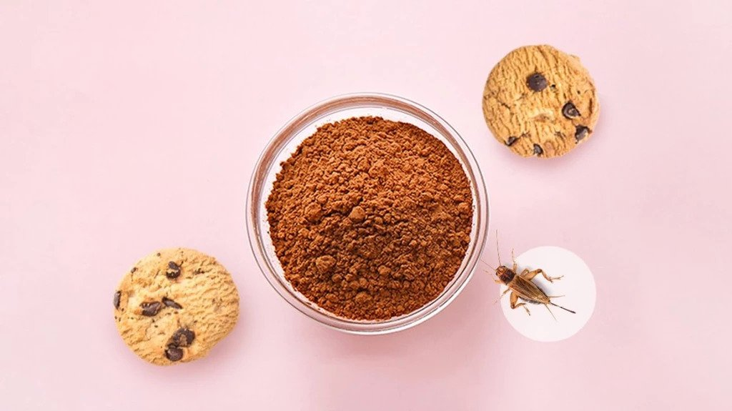 Cricket Powder ( The original Superfood ) and Cookies