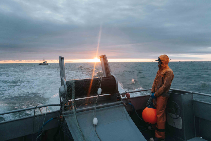 Living aboard in Bristol Bay- An insider's view