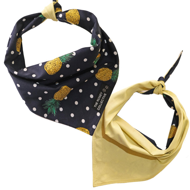 PineDapper Bandana