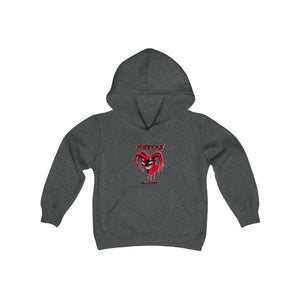 2 SIDED Youth Heavy Blend Hooded Sweatshirt - 12 COLOR - JESTERS