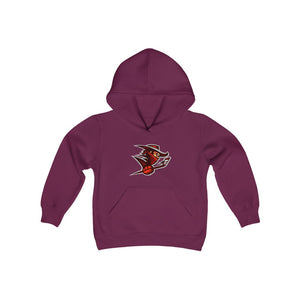 Youth Heavy Blend Hooded Sweatshirt - Outlaws