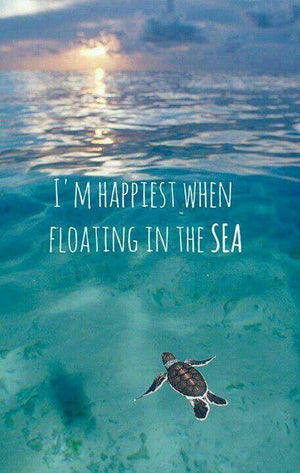 Coastal Quotes: I'm Happiest When Floating In The Sea